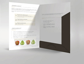 stampa online cartelle di presentazione