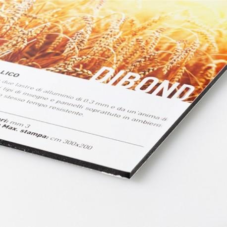 Aluminio - Dibond 3 mm - (Tamaño máximo imprimible en una pieza única: 290x150 cm)