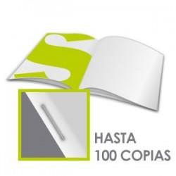 Revistas grapadas - papel 115gr