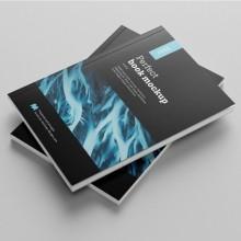 Revistas con encuadernación fresada (más de 500 copias)