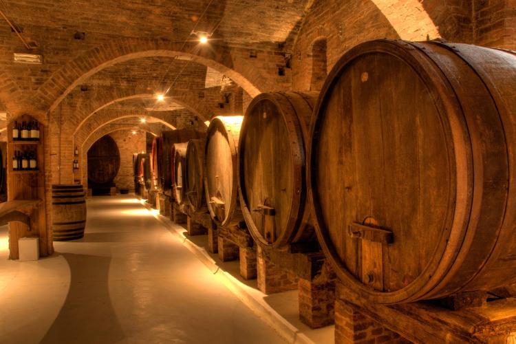 Cantina vini: scopri come avere successo