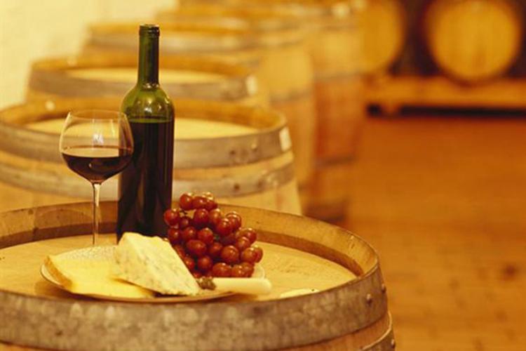 Risultati immagini per cantina vini