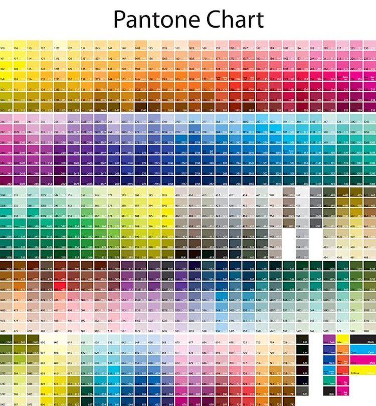 Come scegliere e generare una palette di colori - Scale di colore ...