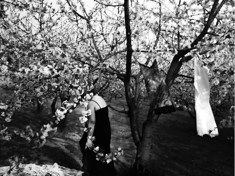 """Andrea Danani, """"Dea degli alberi"""" (2016)"""