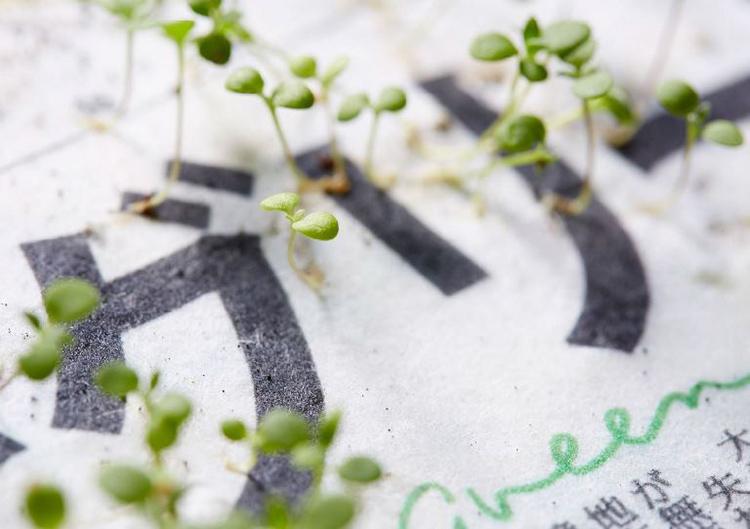 The Mainichi Shimbunsha: le premier quotidien qui se plante après lecture - Stampaprint Blog FR