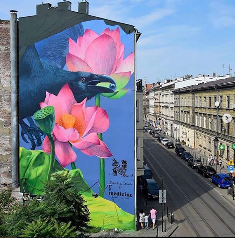 Natalia Rak, Murale Cracovia