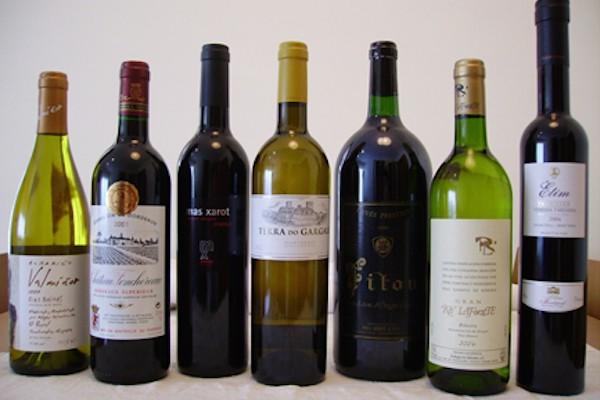 Amato Come creare etichette per vino - Stampaprint UV29